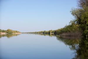 Canal dans le delta
