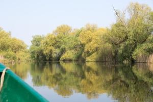 Canal du delta