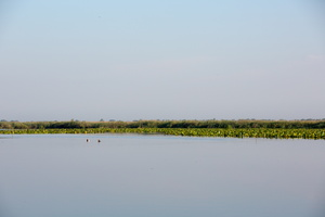 Paysage du delta