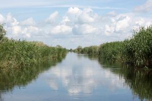 Un canal parmi tant d'autres